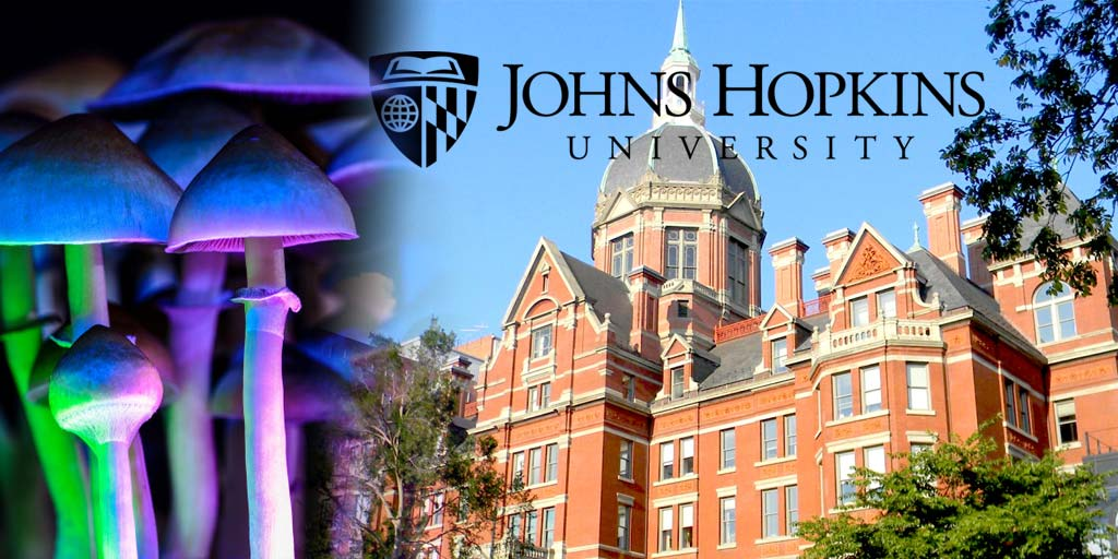 First Psychedelics Research by Johns Hopkins University