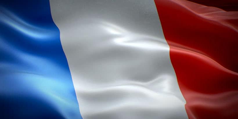 psilocybin in France
