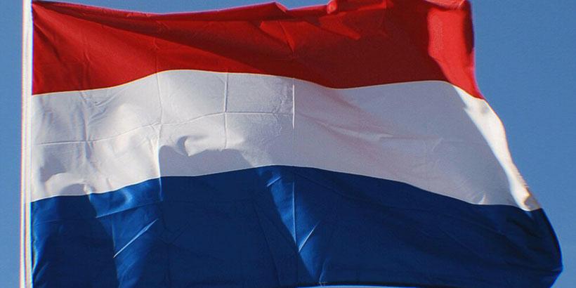 psilocybin in The Netherlands